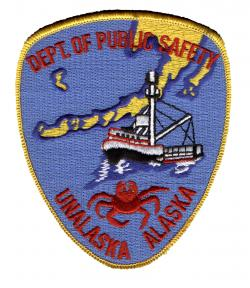 Image of UDPS Patch